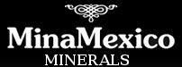 MinaMexico